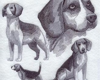 Beagal Sketch Pillow 16 x 16, Free Shipping, Made in the USA, Great gift for the dog lover in your life!