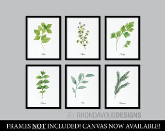 Kitchen Decor. Kitchen Art. Herbs Art Print. Herb Art. Herbs Decor. Herbs Kitchen Art Print. Kitchen Wall Art. Wall Decor. Home Decor NS-854