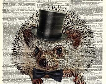 Dapper Hedgehog art print.  Vintage book page art print.  Print on book page.