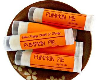 Pumpkin Pie Lip Balm, Pumpkin Flavor, Fall Lip Balm