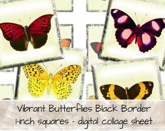 Vibrant Butterflies Black Border 1 inch squares digital collage sheet 0027