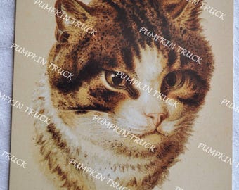 Vintage Note Card - French Cat Les Chats - Unused Art Reproduction