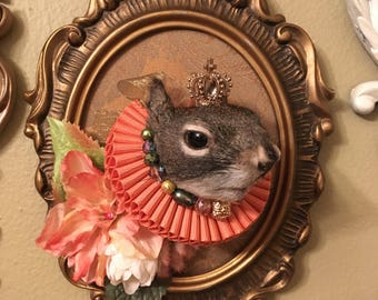Victorian/Monarchy Inspired Taxidermy Squirrel 'Elizabeth the III'