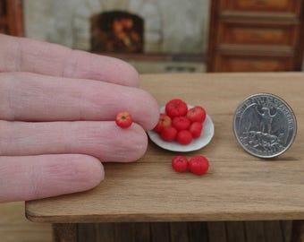 10 pieces. Tomato. Miniature tomato. Red tomato. Miniature food. Dollhouse miniature. Scale 1/12