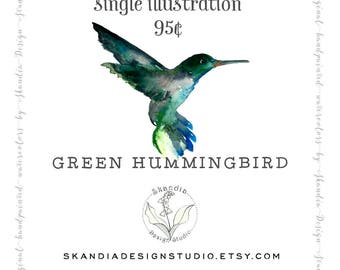 Hummingbird clipart, handpainted clipart, watercolor clipart, hummingbird print, hummingbird painting, wildlife clipart, nature clipart,