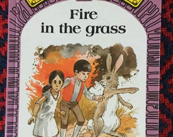 Puddle Lane Ladybird book - Fire in the Grass