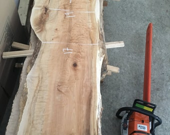 Big Leaf Maple - Live Edge Slab - Quilted Maple -