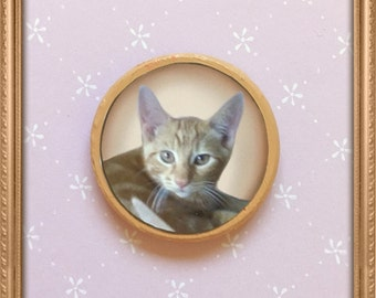 Cat magnets , kawaii magnets , cute magntes , animal magnets