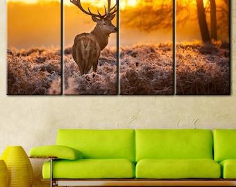 Deer photo, Deer print art, deer in the morning, winter morning, wild nature, wild animals, Wild deer art, Deer in the forest, deer art