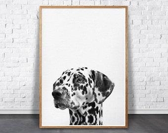 Dalmatian print, Nursery Dog Print, Pet Dog Poster, Printable Art, Pet Printable, Dog Photo Print, Dalmatian gift, Kids Room Animal Print