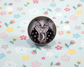 Snap Charm Button - Owl Wizard - Aesop's Fables, Celestial, Meme Jewelry, Dank Memes, Vintage, Noosa, Ginger Snaps, Vintage Illustrations