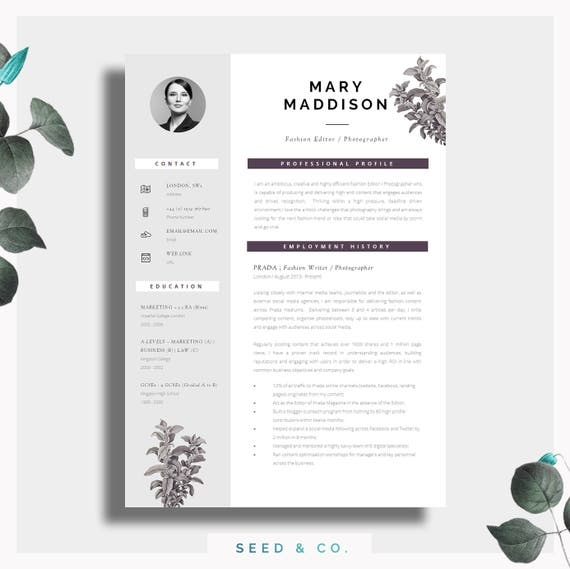 resume template two page resume cover letter advice