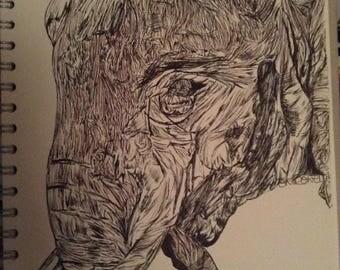 Wildlife Fineliner Drawings