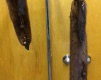 Ferret scarf, Organ's Furs