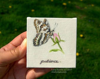 Fruits of the Spirit: Patience... Mini Painting in OIL by Lara ACEO 3x3 Still Life Butterfly Spring Rose