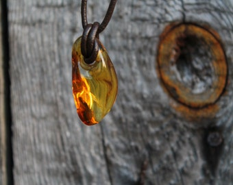 Baltic Amber Pendant Honey Necklace Inclusion Fossil  Fathers Day Gift Dad Boy Dude Nature Lover Men Jewelry Unique