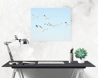 coastal canvas art, seagull wall art, large canvas art, seagull photography, beach house art, gallery wall decor, coastal wall decor