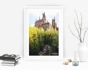 Harry Potter, Hogwarts, Gryffindor, Hogwarts Castle, Universal Studios Photography, Light Blue and Green Home Decor, Harry Potter Wall Art