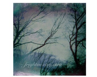 Holga Photography, Nature Art Print, Double Exposure, Haunting Trees, Blue Green Art, Prospect Park, Brooklyn Photography