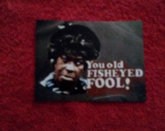 You old fish eye fool magnet