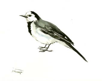 Wagtail, bird art, bird painting, watercolor birds, one of a kind/ lbrary art songbird painting, white black
