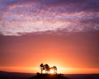 EPIC Colmer's Hill Sunrise, UK Landscape Photography Print, Dorset. Sunburst dawn photo.