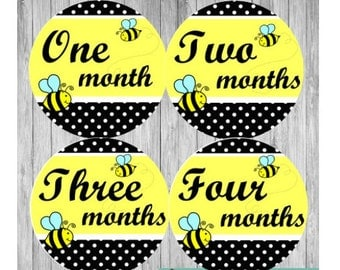 Month to Month, Belly to Baby, Baby Month Stickers, First Year Stickers, Growth Stickers, Watch Me Grow, Bumble Bee