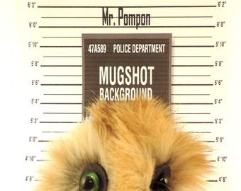 Mr. Pompon Keychain