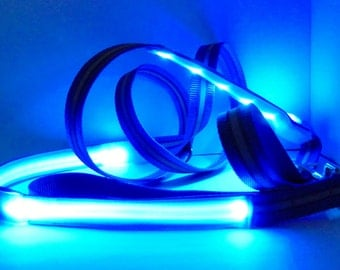 Reflective LED glow leash lights up & flashes in dark for dog safety w/ reflecting trim and LED lights