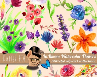 Big 47 Piece Digital PNG Watercolor Flowers Clip Art Collection
