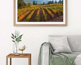 Wine Country Photography, Napa Valley Autumn Vineyard Photo, Misty Fall Print, California Winery, Calistoga Harvest Canvas, Yellow Blue Art