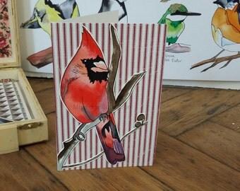 "Hand Made Card / Illustrated Greeting Card/ Bird Card / Hand made greeting card ""Cardinal"""