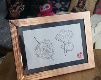 "Framed original drawing ""Ginkgo and shiso"""