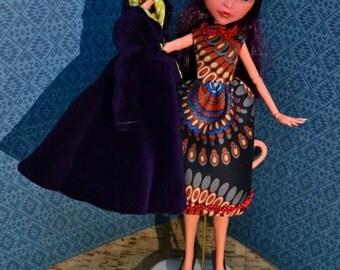 Monster high doll ooak repaint - Eva