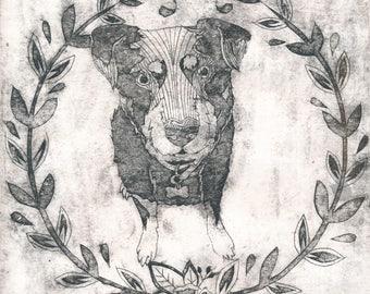 Alfie the Rottweiler