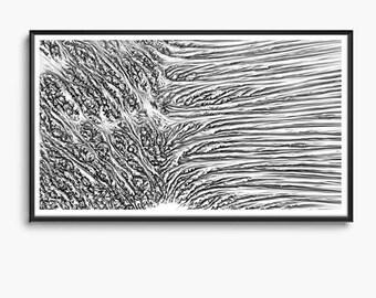 Morphocyte - Artificial Landscape, Cellular Division, Generative Digital Algorithmic Design Printable Download, Computational Art