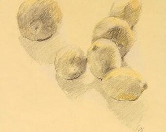 Drawing - lemons - yellow - still life - original art - Pamela Poll