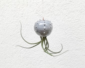 Small hanging vase Cactopus modern ceramic design gray for air plants shaped cactus for Tillandsia (plant not included)