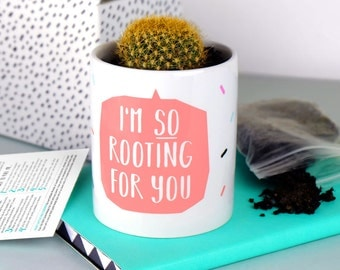 Funny plant pot - I'm so rooting for you - cactus - succulent - succulents - cacti - indoor pot - houseplant - cactus plant - blush pink