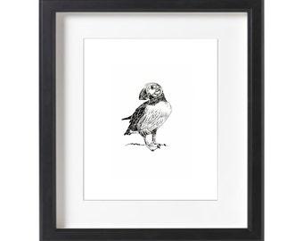 Puffin Drawing Illustration// Miniature Art // Minimalist Print