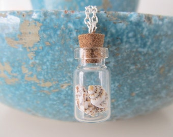 Shell necklace, bottle necklace, shell jewelry