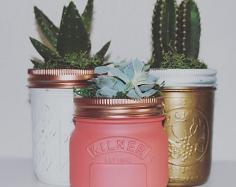 Succulents // beautifully hand painted Ball Mason jars // home decor // cactus // Spain