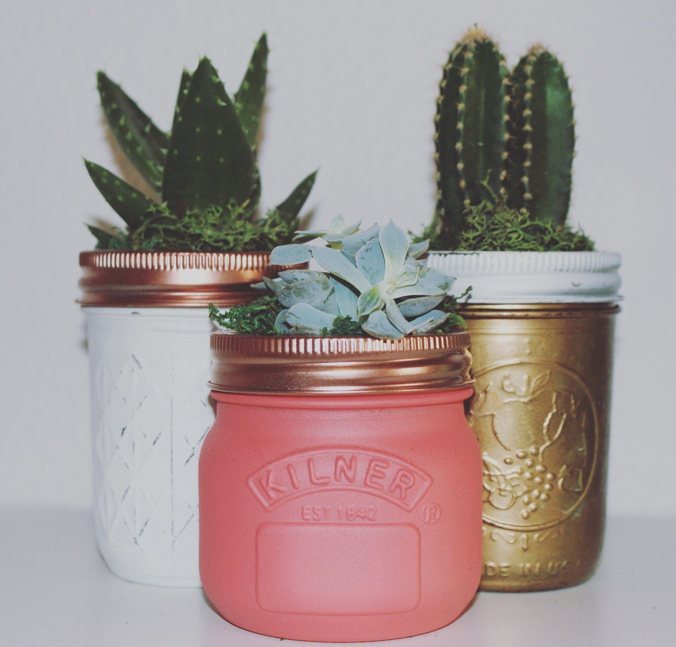 Succulent Jar Beautifully Hand Painted Ball Mason Jars Home Decor Cactus Unusual Gift Ideas Mothers Day Unique