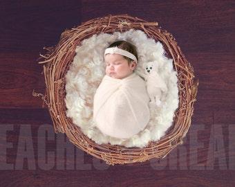 DIGITAL Nest, Nest Newborn, Baby Overlay,  DIGITAL PropBackdrop, Newborn Spring, Newborn Nest, Portrait Overlay, Newborn Overlay, Nest prop