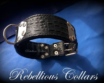Leather dog collar with stainless steell