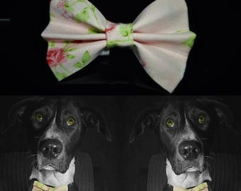 Flordulce Dog Bow Tie - Pink