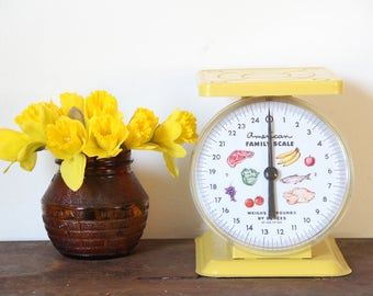 Vintage Scale, vintage metal scale, American Family Scale, yellow scale