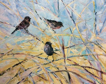 Sparrow Birds in thick brush