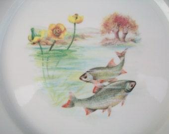 Decorative Plates, Vintage Plates, Dinner Plates, Fish Plates, Collectible Plates, Dinner Plates, Plates