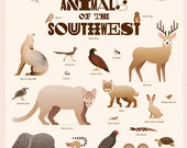 Animals of the Southwest Poster